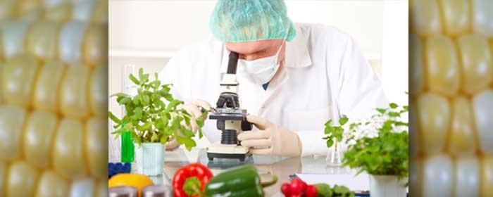 Engineering-Biomedical Engineering (AS)