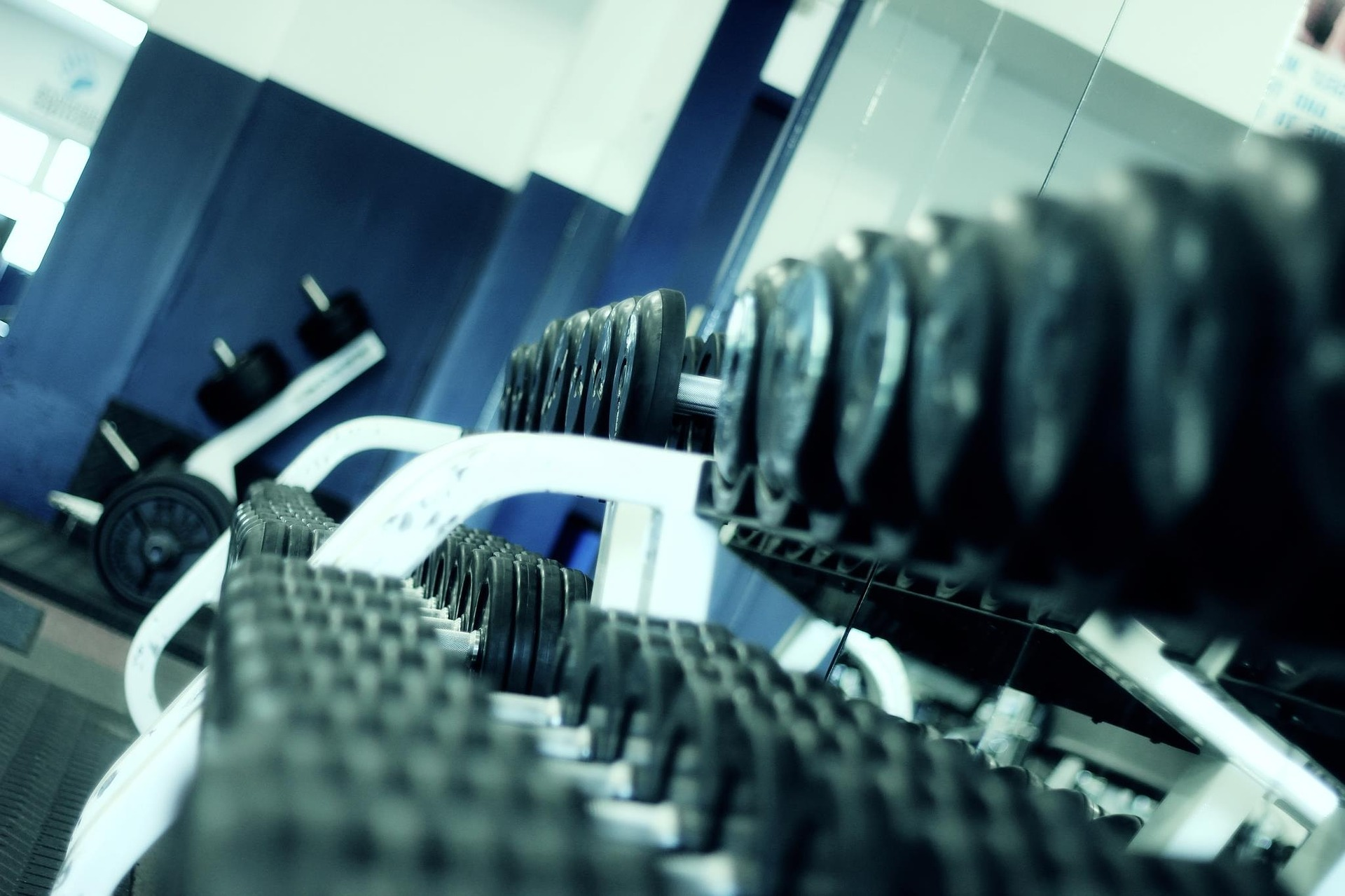 Exercise Science (AS)